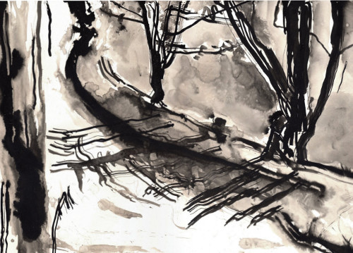 This drawing in the 805 steps series of drawings along the Hertford Union canal made in 2015 was made using indian ink and leaves and  	twigs found on the towpath.