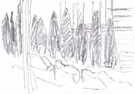 Pencil sketch of trees at the base of the Palentine Hill, Rome 5 June 2016
