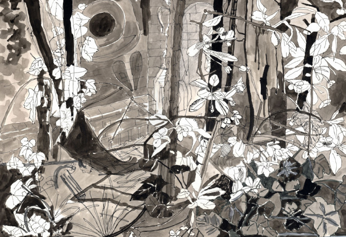 Pen and ink drawing of blossom along the Hertford Union canal made in 2015